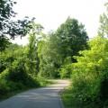 der-neue-Havelradweg
